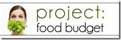 projectbudget